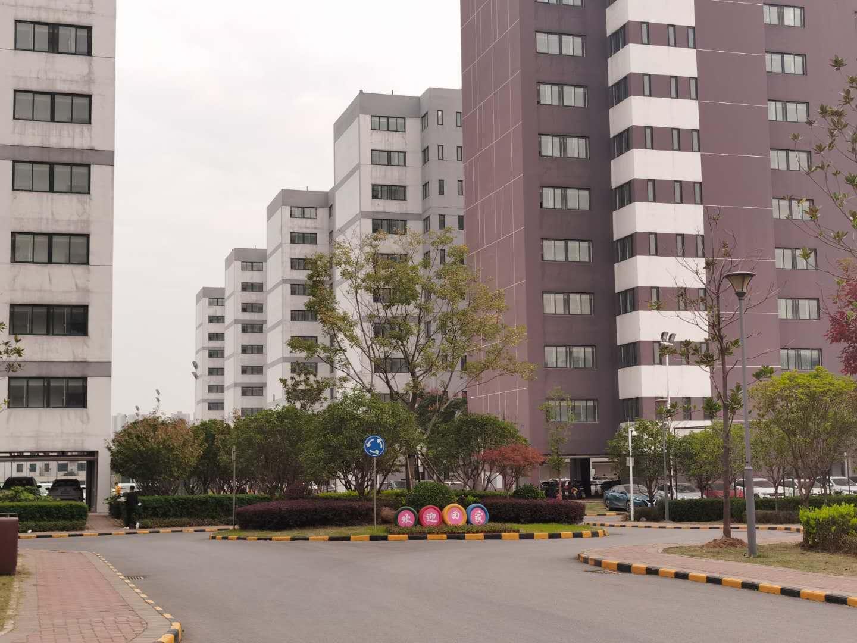 华星光电国资上市企业招聘组装质检贴片包装工
