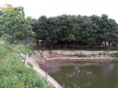 鄂州市开心农庄 鱼塘农家乐出租、转让或合作经营